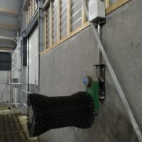 Comfy cow koeborstel (3)
